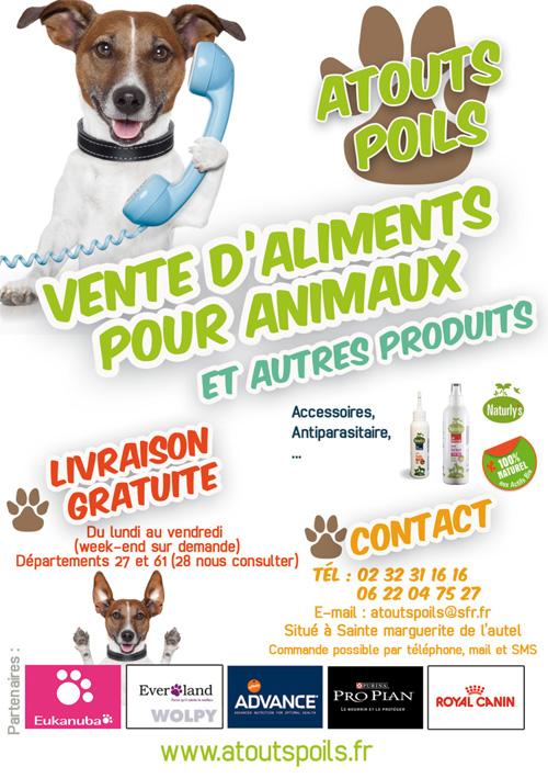 Flyer pour v nement lapilazuli cr ation plaquette for Idee de creation d entreprise animaux